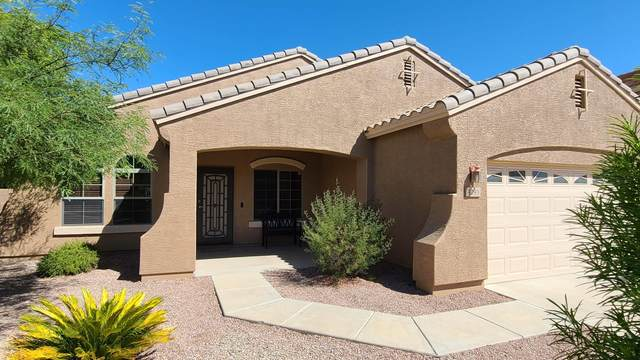 4293 E Colonial Drive, Chandler, AZ 85249 (MLS #6100616) :: Homehelper Consultants