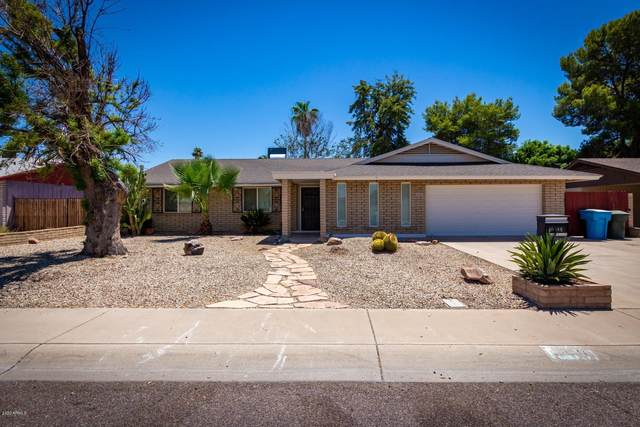 10031 N 37TH Drive, Phoenix, AZ 85051 (MLS #6100623) :: TIBBS Realty