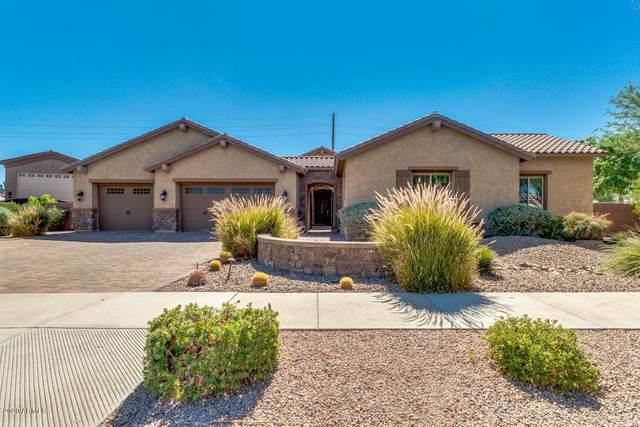 21349 S 199TH Way, Queen Creek, AZ 85142 (MLS #6100638) :: Homehelper Consultants