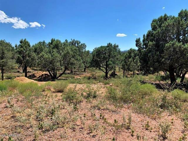 1102 N Earhart Parkway, Payson, AZ 85541 (MLS #6100645) :: Riddle Realty Group - Keller Williams Arizona Realty