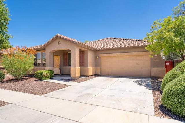 14567 W Sierra Street, Surprise, AZ 85379 (MLS #6100647) :: TIBBS Realty