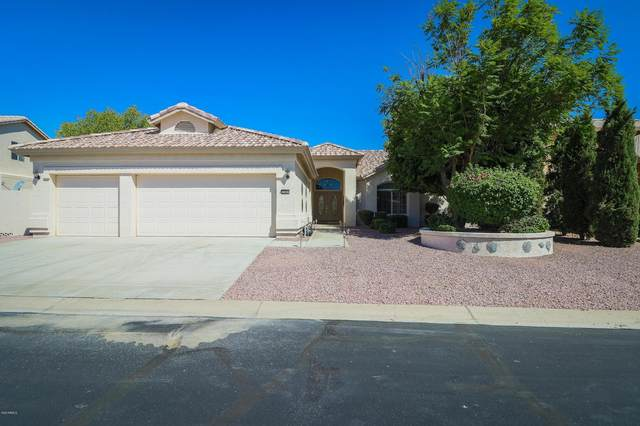 3182 N 150TH Avenue, Goodyear, AZ 85395 (MLS #6100652) :: Devor Real Estate Associates