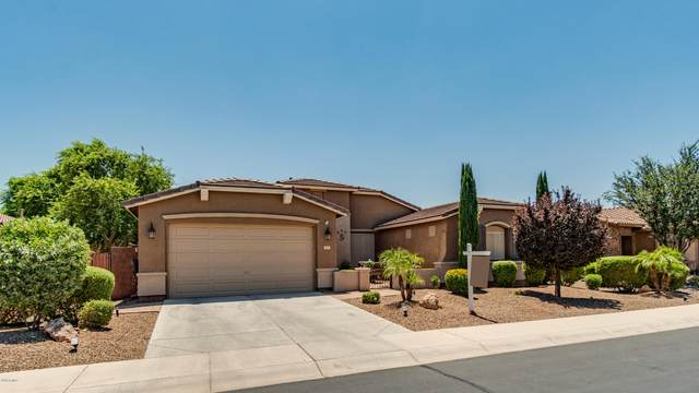 647 W Leatherwood Avenue, Queen Creek, AZ 85140 (MLS #6100655) :: TIBBS Realty