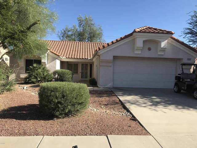 15225 W Sky Hawk Drive, Sun City West, AZ 85375 (MLS #6100658) :: The Garcia Group