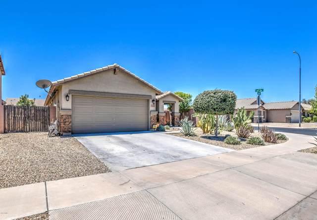 11429 W Hadley Street, Avondale, AZ 85323 (MLS #6100662) :: TIBBS Realty
