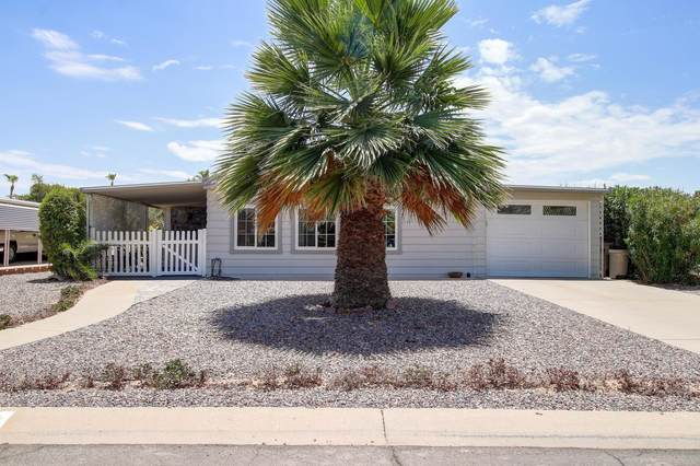 9241 E Cactus Lane S, Sun Lakes, AZ 85248 (MLS #6100689) :: Keller Williams Realty Phoenix