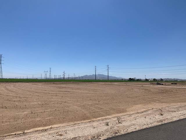 0000 S 221st Avenue, Buckeye, AZ 85326 (MLS #6100701) :: Dijkstra & Co.
