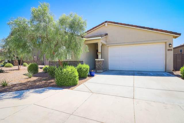 1977 N 213TH Drive, Buckeye, AZ 85396 (MLS #6100703) :: The Daniel Montez Real Estate Group