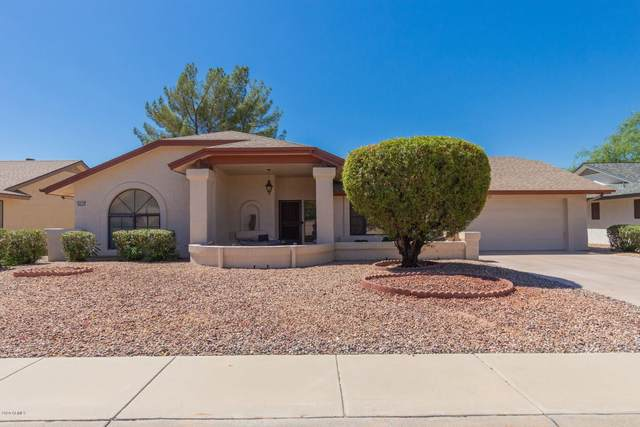14121 W Elmbrook Drive, Sun City West, AZ 85375 (MLS #6100713) :: Dave Fernandez Team | HomeSmart