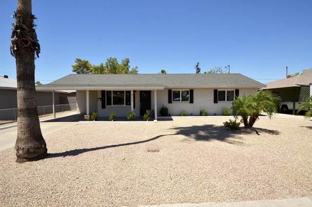 816 E Seldon Lane, Phoenix, AZ 85020 (MLS #6100763) :: Klaus Team Real Estate Solutions