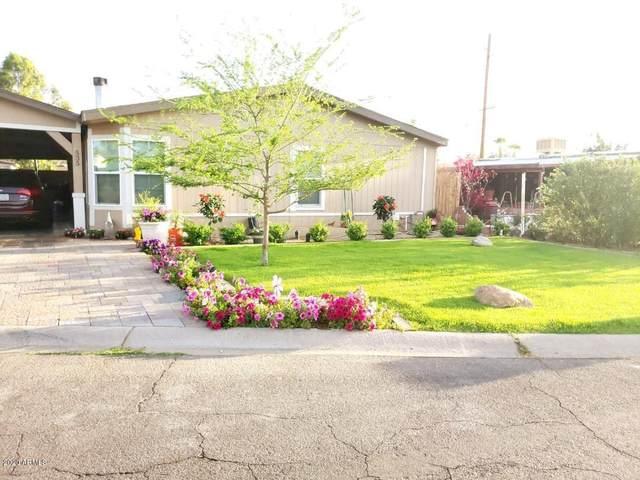 535 E Libby Street, Phoenix, AZ 85022 (MLS #6100784) :: Brett Tanner Home Selling Team