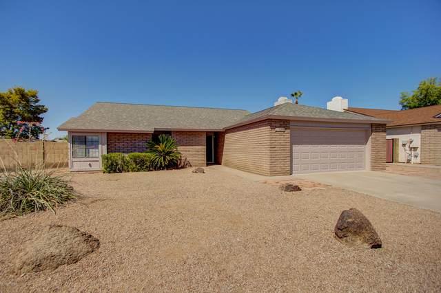 16248 N 9TH Place, Phoenix, AZ 85022 (MLS #6100808) :: Dave Fernandez Team | HomeSmart