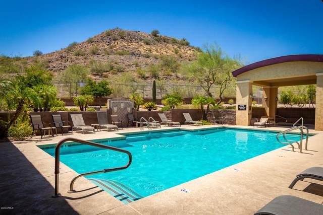 9820 N Central Avenue #323, Phoenix, AZ 85020 (MLS #6100838) :: Klaus Team Real Estate Solutions