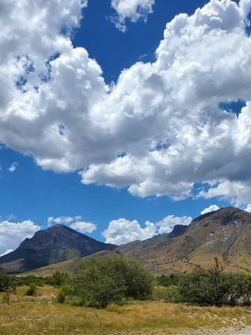 TBD S Coronado Memorial Road, Hereford, AZ 85615 (MLS #6100849) :: Keller Williams Realty Phoenix