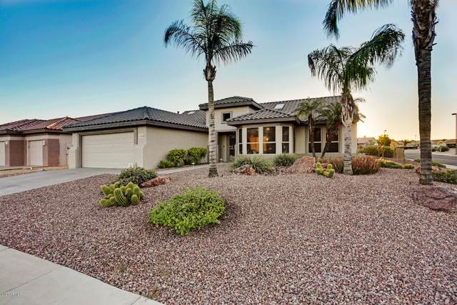 17248 N Augusta Lane, Surprise, AZ 85374 (MLS #6100856) :: Long Realty West Valley