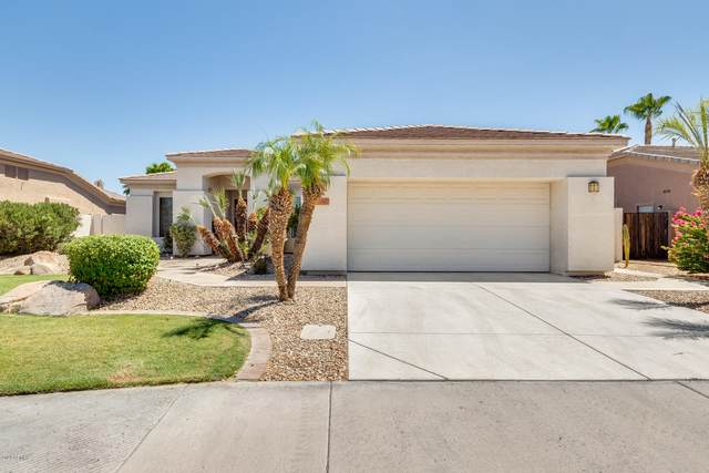 3641 S Camellia Place, Chandler, AZ 85248 (MLS #6100884) :: Lucido Agency