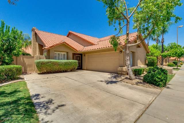 13508 N 92ND Way, Scottsdale, AZ 85260 (MLS #6100895) :: neXGen Real Estate