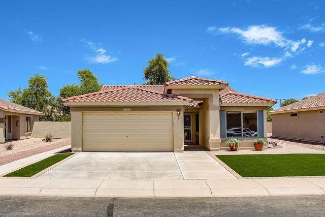 4556 E Sycamore Court, Gilbert, AZ 85298 (MLS #6100917) :: Lucido Agency