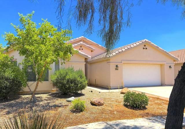 146 S Lucia Lane, Casa Grande, AZ 85194 (MLS #6100964) :: Arizona Home Group
