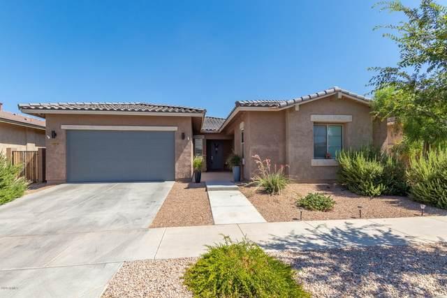 22660 E Munoz Street, Queen Creek, AZ 85142 (MLS #6100981) :: Nate Martinez Team
