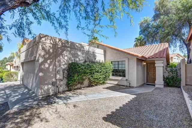 10362 E Voltaire Avenue, Scottsdale, AZ 85260 (MLS #6101010) :: Devor Real Estate Associates