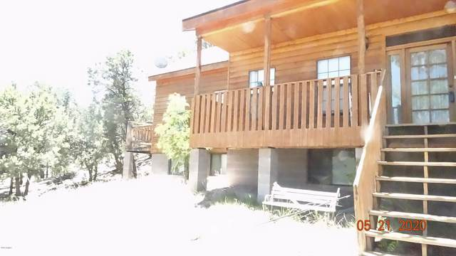 1817 W Snowline Drive, Eagar, AZ 85925 (MLS #6101047) :: The Property Partners at eXp Realty