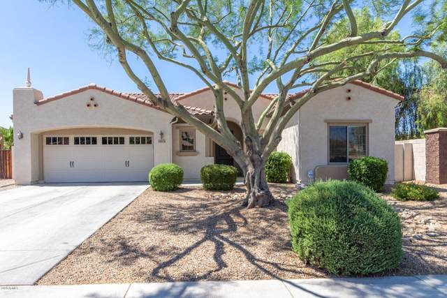 15676 W Minnezona Avenue, Goodyear, AZ 85395 (MLS #6101049) :: Devor Real Estate Associates