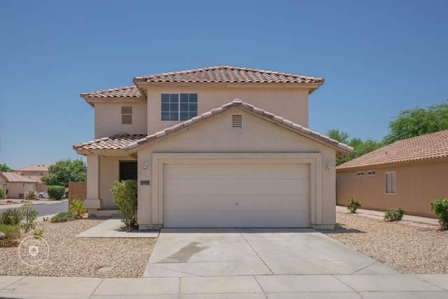 12001 W Aster Drive, El Mirage, AZ 85335 (MLS #6101074) :: The Laughton Team