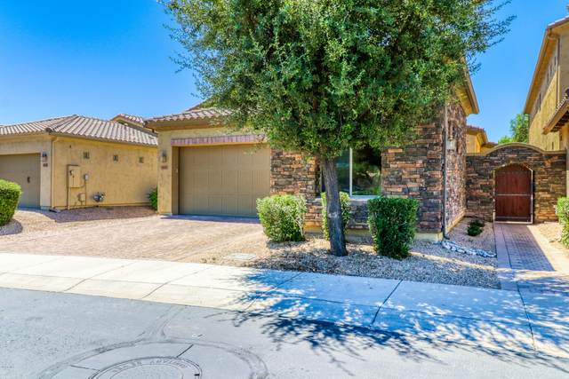 14253 W Harvard Street, Goodyear, AZ 85395 (MLS #6101092) :: Devor Real Estate Associates