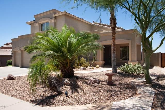 25640 N Singbush Loop, Phoenix, AZ 85083 (MLS #6101094) :: Yost Realty Group at RE/MAX Casa Grande