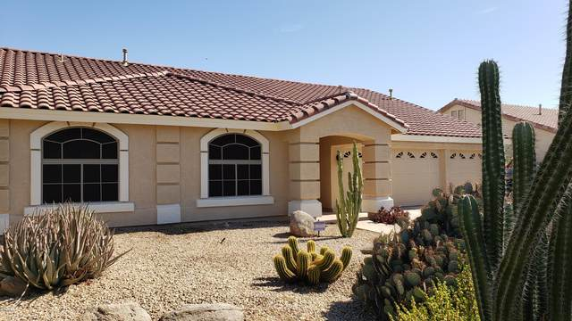 4830 W Gwen Street, Laveen, AZ 85339 (MLS #6101104) :: Brett Tanner Home Selling Team