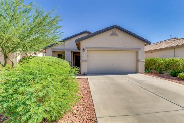 17063 W Bridlington Lane, Surprise, AZ 85374 (MLS #6101116) :: Homehelper Consultants