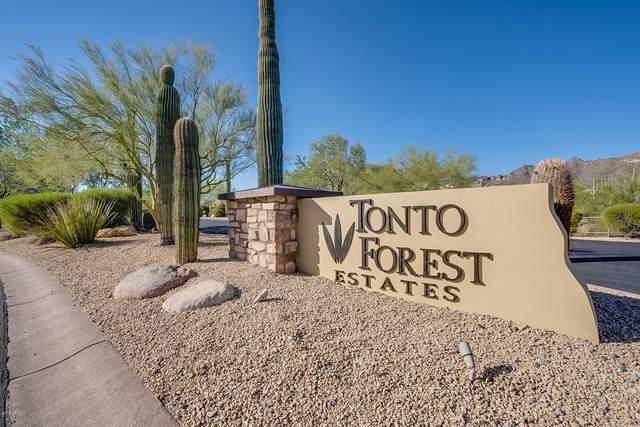11355 E Minton Street, Mesa, AZ 85207 (MLS #6101129) :: Keller Williams Realty Phoenix