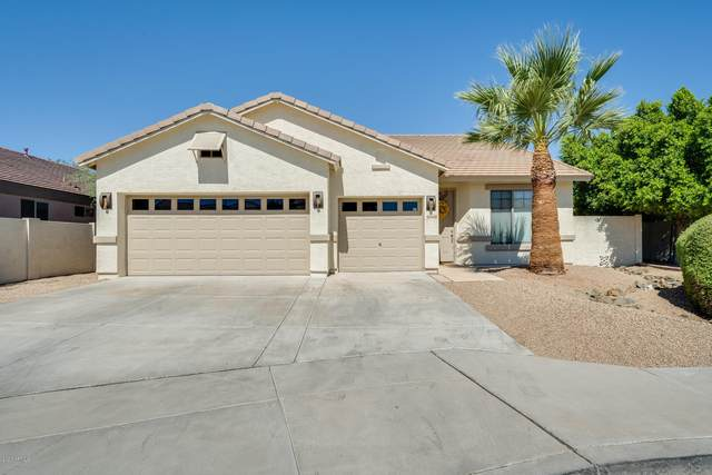 24420 N 60TH Lane, Glendale, AZ 85310 (MLS #6101130) :: Yost Realty Group at RE/MAX Casa Grande