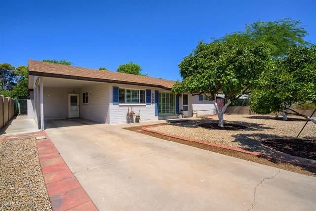 4008 N 48TH Place, Phoenix, AZ 85018 (MLS #6101144) :: The Laughton Team