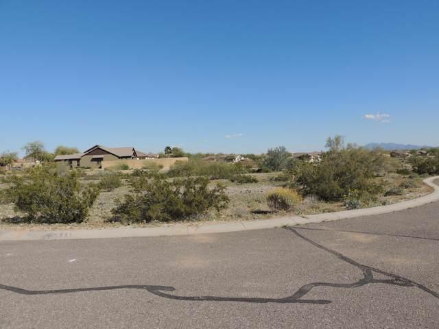 21163 W Western Drive, Buckeye, AZ 85396 (MLS #6101151) :: Kathem Martin