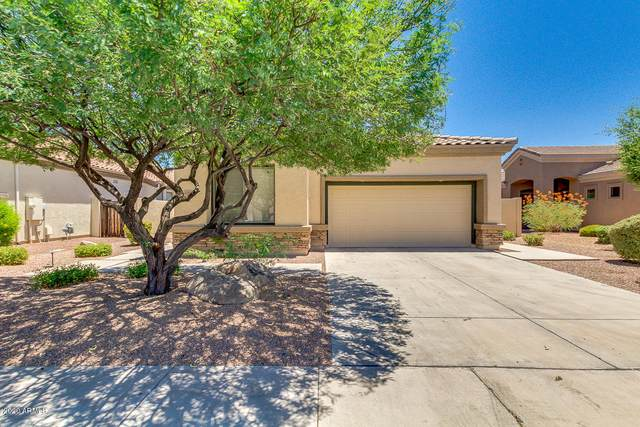 6853 S Pinehurst Drive, Gilbert, AZ 85298 (MLS #6101236) :: Openshaw Real Estate Group in partnership with The Jesse Herfel Real Estate Group