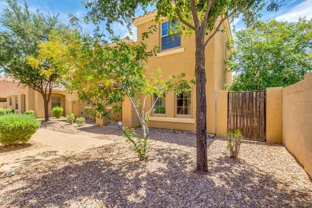2551 E Bart Street, Gilbert, AZ 85295 (MLS #6101248) :: Lux Home Group at  Keller Williams Realty Phoenix