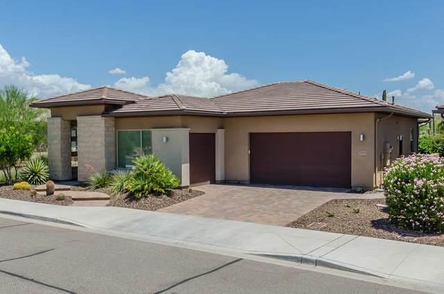 29993 N Suscito Drive, Peoria, AZ 85383 (MLS #6101249) :: The Laughton Team