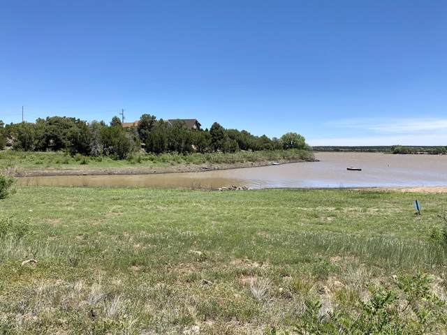2029 Silver Creek Drive, Show Low, AZ 85901 (MLS #6101304) :: The Everest Team at eXp Realty