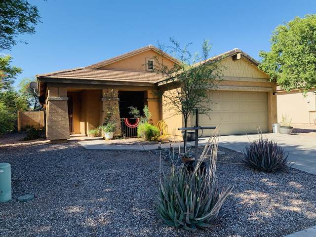 2677 W Half Moon Circle, Queen Creek, AZ 85142 (MLS #6101311) :: Nate Martinez Team