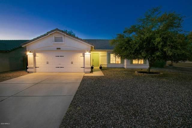 3144 E Rosemonte Drive, Phoenix, AZ 85050 (MLS #6101320) :: Arizona Home Group