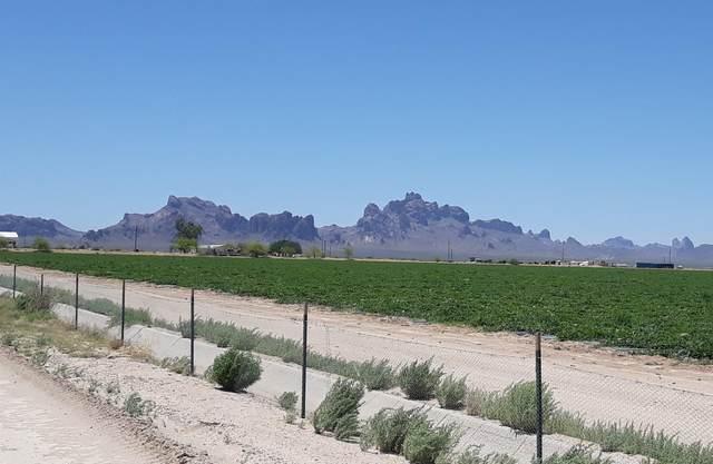 10681 S 531ST Avenue, Tonopah, AZ 85354 (MLS #6101323) :: Keller Williams Realty Phoenix
