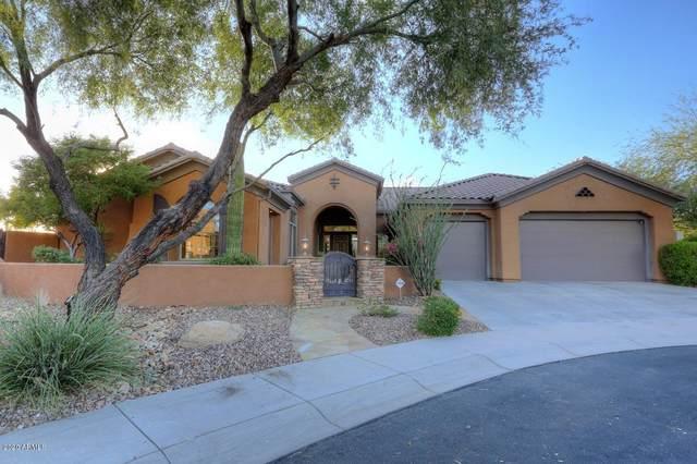 40910 N River Bend Court, Phoenix, AZ 85086 (MLS #6101358) :: Nate Martinez Team