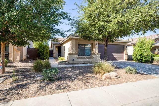 157 W Reeves Avenue, San Tan Valley, AZ 85140 (MLS #6101384) :: Nate Martinez Team