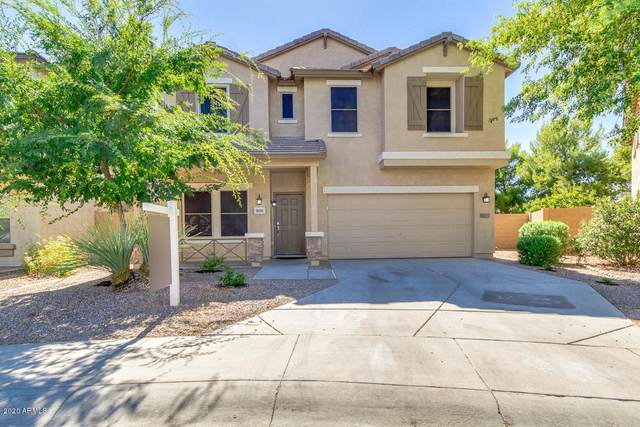 4658 S Veneto, Mesa, AZ 85212 (MLS #6101410) :: My Home Group