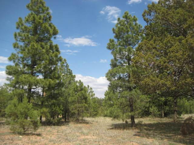 4270 Morning View Drive, Happy Jack, AZ 86024 (MLS #6101414) :: Lucido Agency