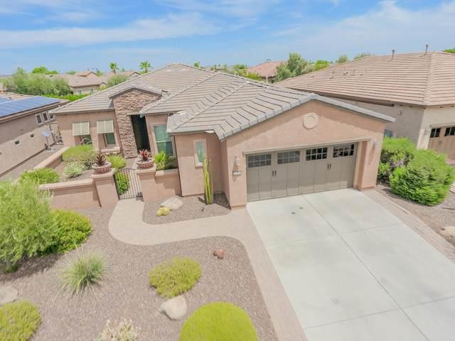 29329 N 130TH Glen, Peoria, AZ 85383 (MLS #6101419) :: Klaus Team Real Estate Solutions