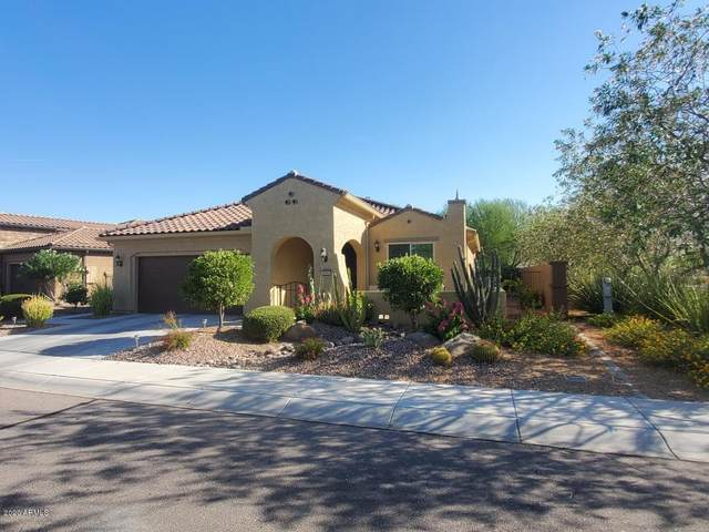 7385 W Silver Spring Way, Florence, AZ 85132 (MLS #6101441) :: Lucido Agency