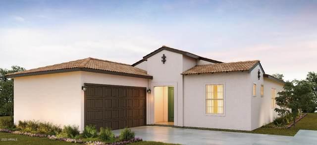 11709 N Luckenbach Street, Surprise, AZ 85388 (MLS #6101466) :: Klaus Team Real Estate Solutions